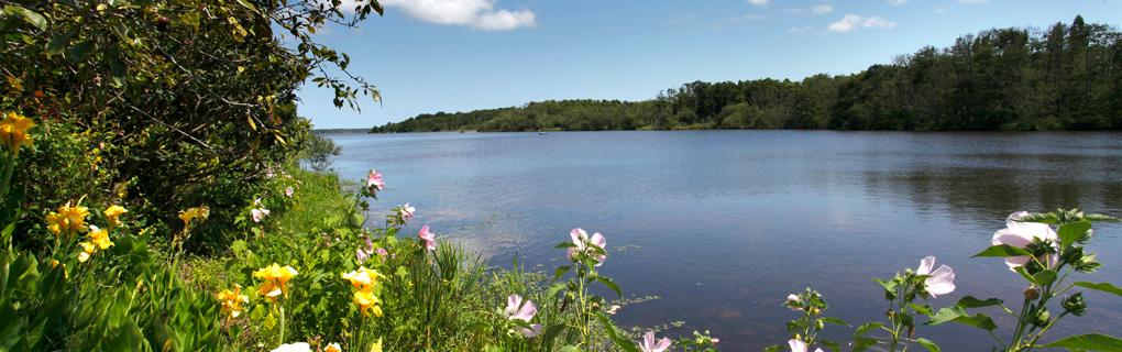 Lac Mimizan